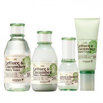 Premium lettuce & cucumber