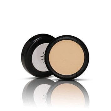 Missha The Style Perfect Concealer 1