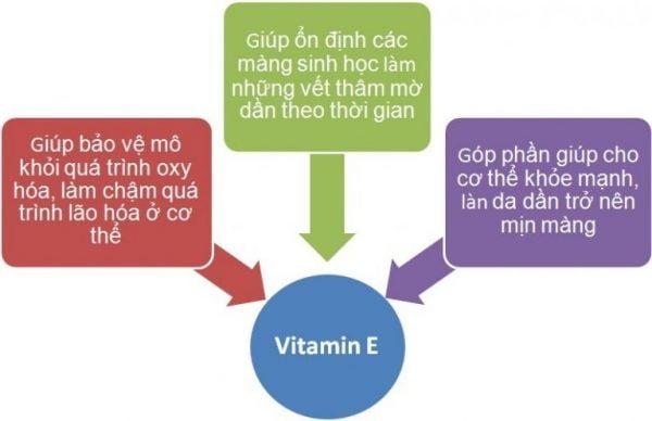 tac-dung-vitamin-e1