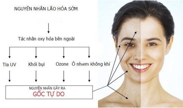 Viên uống bổ sung collagen: Fine Pure Collagen Q