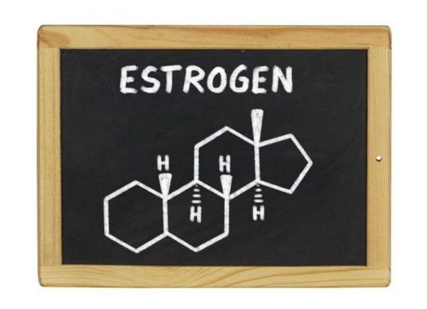 Estrogen giúp chị em có ham muốn tình dục | Estrogen giúp chị em có ham muốn tình dục