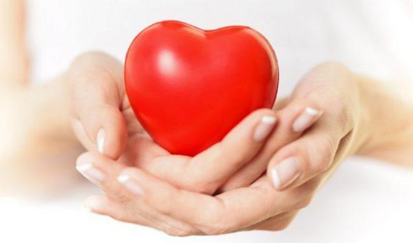 Đậu lăng rất tốt cho tim mạch | Đậu lăng rất tốt cho tim mạch