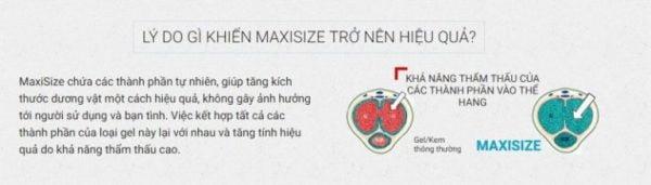 Maxisize 2