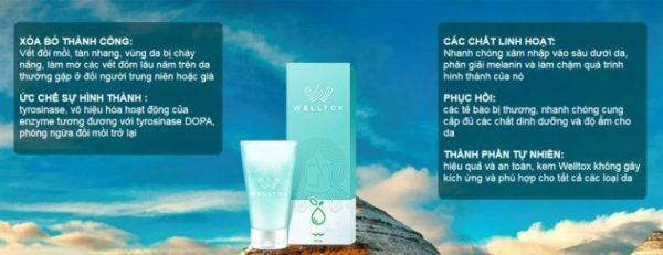 Welltox cream kem trị nám tàn nhang hiệu quả