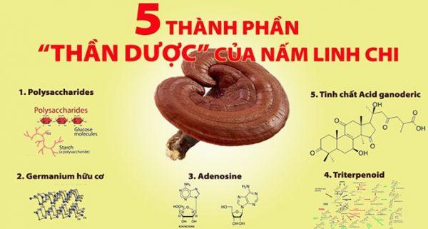 5 THAN DUOC LINH CHI min min | 5 THAN DUOC LINH CHI min min