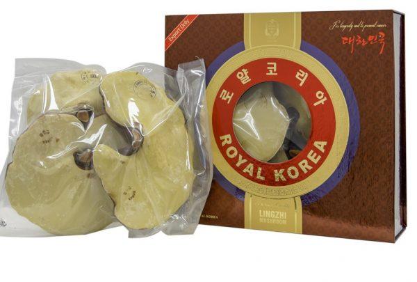 Nấm Linh Chi Hoàng Gia Royal Lingzhi Mushroom | Nấm Linh Chi Hoàng Gia Royal Lingzhi Mushroom