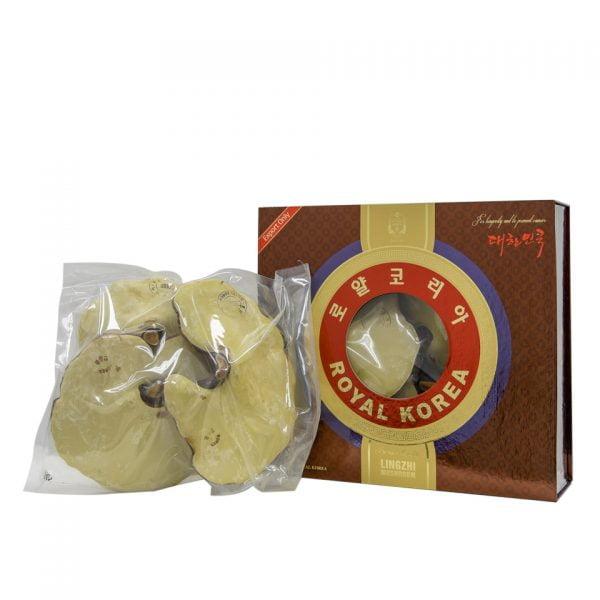 Nấm Linh Chi Hoàng Gia Royal Lingzhi Mushroom1 | Nấm Linh Chi Hoàng Gia Royal Lingzhi Mushroom1