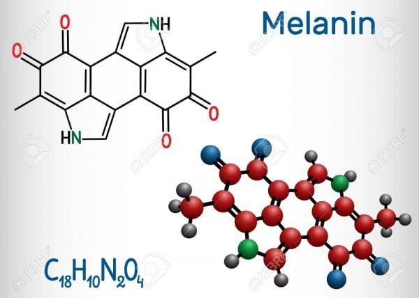Melanin là gì | Melanin là gì