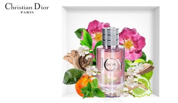 Mùi hương tinh tế quyến rũ